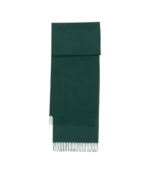아페쎄 A.P.C. Ambroise scarf,DARK GREEN